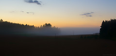 Evening mist (Joni Mansikka) Tags: summer nature outdoor fields woodland trees silhouettes mist sky colours landscape dusk paimio suomi finland tamronspaf2875mmf28xrdildasphericalif