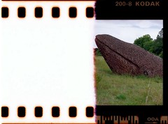 Bristol Whale (Walt Jabsco) Tags: pentaxk1000 kodakcolourplus sprokets epsonv500 scanned film 35mm bristol thestartoftheroll sneydpark bristolwhales whale