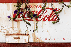 Drink Coca-Cola Ice Cold (Cardwell Photo LLC | Thanks for 2 Million Views!) Tags: abandoned beaumont brown cocacola decay flowers green jeffersoncounty orange outdoor ppl plants purple red retro rust texas vine vines vintage warm white streetphotography