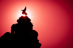 Sunburst & Silhouette - Liver Bird (kevinsharp7) Tags: silhouette red sunburst liverpool liverbirds liverbuilding building architecture