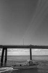 phillip island bridge (Kenneth Rowe) Tags: bw blackandwhite blackandwhitelandscape sanremo sanremojetty monochrome iphone6 provoke