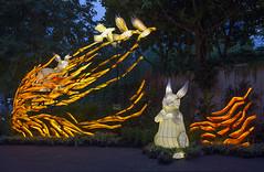 Mid-Autumn Festival @ Gardens by the Bay - Stories of the Moon (gintks) Tags: gintaygintks gintks gardensbythebay singapore singaporetourismboard singapur sg51 lanterns lanternfestival giantlanterns yoursingapore exploresingapore colourful lightup