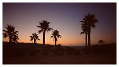 Sunrise    HSS (Vintage lens lover) Tags: sunrise sonnenaufgang sonne slidersunday mallorca summer sommer