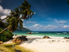(simon zalto) Tags: seychelles ocean indian palm tree blue summer holiday vacation sand sky water rocks clouds
