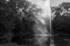 fountain in the sun (jana.johnston) Tags: fountain sun park natur killesberg stuttgart fontne lichtstrahlen