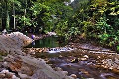 eker Kanyonu (syhnbykync) Tags: stream nature forest greens yeillik ormanlk wooded yenice karabk karadeniz longexposure long exposure uzun pozlama