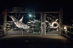 20160823_0024_1 (Bruce McPherson) Tags: brucemcphersonphotography sailing sailboat columbia22 columbia22sailboat tara outdoors warm sunny straitofgeorgia howesound gibsonsmarina gibsonslanding gibsons bc canada