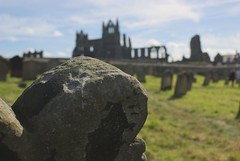 _DSC0761 (Ryd3rsPhotographs) Tags: whitby abbey photo building noob beginner amature horse grave yard goth gothic scenery grass scenic landscape long exposure