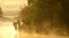 Weerfoto dinsdag 20 september 2016 (Omroep Brabant) Tags: mistbankenbijzonsopkomst wwwomroepbrabantnl brabant brabantseseizoenen weerfotos weer