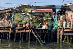 Bangkok canals (Context Travel) Tags: bangkok shutterstock