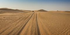 No passing (Tiigra) Tags: murqquab dubai unitedarabemirates ae 2013 car color landscape nature road