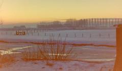 dutch winter (30) (bertknot) Tags: winter dutchwinter dewinter winterinholland winterinthenetherlands hollandsewinter winterinnederlanddutchwinter