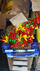 Chili Peppers (EvelynHill) Tags: red italy food rome roma green colors yellow chili market peppers campodeifiori