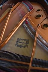 Yamaha Piano (Victor Mitri) Tags: home modern holding piano east yamaha 51 darwish doha qatar