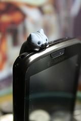 PHONE CAT HAS A MUSTACHE!!! (Rakka) Tags: cat kawaii thebest soawesome phonecat guampackage thankyouchotda packagefromchotda