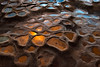 Potholes of Gold (mojo2u) Tags: california sunset beach reflections coast sandiego lajolla lajollashores potholes nikon2470mm sandstonerock nikond800 hospitalsreef lajollapotholes