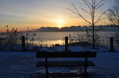 A bench with a view (shireye) Tags: winter snow toronto ontario cold sunrise fence reeds bench nikon view scarborough lakeontario cliffside scarboroughbluffs benchwithaview d7000