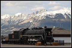 4384-steam engine at jasper (AJAY.K.SHAH2011) Tags: travel canada rockies jasper canadian steamengine