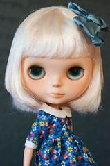 Little Miss Clover xx