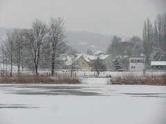 winter at the pond (germancute) Tags: winter snow germany day village arnstadt pwwinter