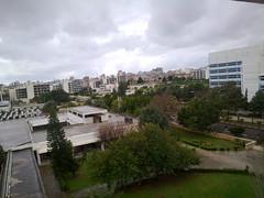 Tishreen University (NabilABOKAF) Tags: university syria agriculture faculty latakia       nabilabokaf  tisfreen