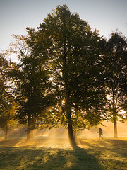 A walk in Sutton Park...... (Chrisconphoto) Tags: park light dawn mood atmosphere walker rays shafts sthelens suttonpark goodlight