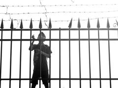 Fly Kite, Fly... (adzscott) Tags: blackandwhite india mumbai