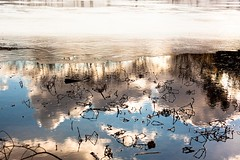 (Lastexit) Tags: winter sea sky snow cold ice water reflections frozen sticks pond freeze branfordsupplyponds zeiss50mm