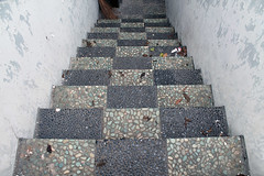 G15 (asterikka) Tags: leaves stone stairs indonesia rocks paving surabaya pedestriancrossing jembatanpenyebrangan perkerasan