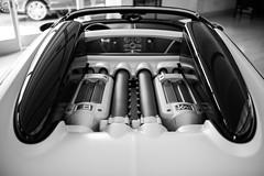 Bugatti Grand Sport Blanc Noir (Bugatti Automobiles S.A.S.) Tags: white speed noir bugatti luxury supercar supercars roadster opentop openroof bugattiveyrongrandsport bugattigrandsport bugattiautomobiles