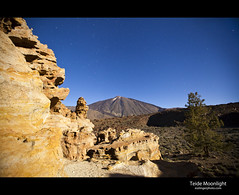 Teide Moonlight (esslingerphoto.com) Tags: longexposure blue santiago light sky moon mountain tree stone night canon stars vent photography volcano evening spain europe long exposure shot nightshot peak el unesco fullmoon single tenerife moonlight 5d nightshots volcanic eruption puertodelacruz mkii islascanarias moonshadow 1909 canaryisland clearskies mountteide esslinger mtteide chinyero esslingerphotocom picoviejomontana
