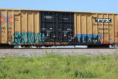 sarrow  texer (wheredyougetdemshoes) Tags: sarrow texer ex31313