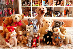 teddies...steiff and poodle (girl enchanted) Tags: red dog white ikea puppy toy toys junk dolls treasure bears disney shelf collection poodle doggy barbies pup mattel clutter collectibles dollies toyroom expedit blythes 80stoys vibtage dollyroom