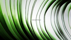(((((((((( +bw (Maria Dattola) Tags: copyright abstract macro canon eos © postit astratto 67 astrattismo 2013 100mmlens foglietti 1000d mariadattola