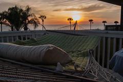 Going Down (J W Hamilton V Photography) Tags: ocean sunset sun beach water relax nikon gulf florida sleep palmtrees palmtree hammock rest mexicobeach d3000 nikond3000