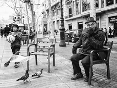 Urban columbidae, man on a individual bench and a football promise (unoforever) Tags: barcelona street people man monochrome bench photography calle gente pigeons streetphotography streetphoto palomas hombre bcd fotografa spmonochrome unoforever