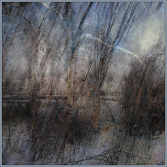 Icy Branches at the River. (Tim Noonan) Tags: blue trees winter light sky white black colour texture ice water digital photoshop river grey branches freeze melt bushes mosca artbook vermillion hypothetical crmedelacrme quadrado layered lavieenrose thegoldengallery vividimagination artdigital greenscene shockofthenew artandphotography stickybeak sharingart awardtree firstofall artfortheart davincimemories maxfudgeawardandexcellencegroup magiktroll exoticimage underthesignofthewhiterose rhapsodicpoemsofhomer admintalkinternational netartii vividnationexcellencegroup stickymaximus