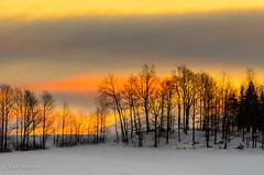 Petit matin pastel / Early pastel morning (guysamsonphoto) Tags: morning winter snow sunrise landscape hiver neige paysage matin leverdesoleil mfcc nikkor70300vr nikond7000 guysamson