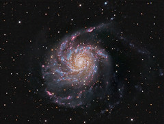 Pinwheel Galaxy M101 with H-Alpha (Terry Hancock www.downunderobservatory.com) Tags: camera sky monochrome night stars photography mono major pier back backyard fotografie photos thomas 10 space shed science images astro apo m observatory telescope galaxy astrophotography astronomy imaging pinwheel messier ccd universe f8 cosmos technologies hii ursa paramount luminance m101 lodestar teleskop astronomie byo refractor deepsky f55 halpha ngc5457 astrograph autoguider starlightxpress astrotech ritcheychrtien tmb92ss mks4000 gt1100s qhy9m flickrsfinestimages1