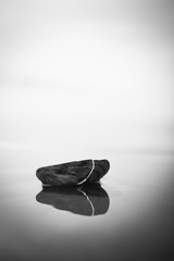 Broken Shell (Eric Lindqvist) Tags: ocean travel summer vacation blackandwhite bw sun beach water beautiful sunshine canon coast spring sand sweden bokeh shell sigma wave shore westcoast vatten sommar halland 30mm sigma30mmf14exdchsm swedishwestcoast soligt vår vågor 1000d canoneos1000d västkusten snäcka