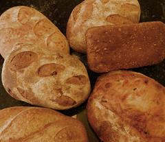 Bread.JPG (wildrosetn39) Tags: elementsorganizer