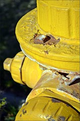 Rusty Hydro Plug (✿☼Hot & Humid-Whew!!!☼✿) Tags: old yellow hydrant fire used rusted plug nikkor1855mmlens nikond5100 thisphotois135365inmy365daysofphotoswalkingaroundmyneighborhoodproject forbdcrusty