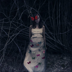 The forest (Beata Rydn) Tags: forest butterfly dark darkness butterflies conceptual fineartphotography conceptualphotography darkfairytale fotokonst swedishphotography beatarydn fotokonstnr
