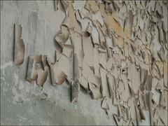 (leo59) Tags: wall peeling paint ede leo59 muur bladder enka kunstmarkt