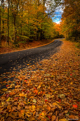 Nithgrove Rd. (davidkoiter) Tags: road autumn ontario david colour fall leaves tarmac canon eos leaf 7d l series f4 hdr 1740 paved f4l koiter davidkoiter