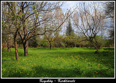 IMG_1074-2 (ksenophanes) Tags: green nature turkey trkiye saray manzara gezi yeil vize doa trakya kirklareli kiyikoy erkezky kyky cerkezkoy