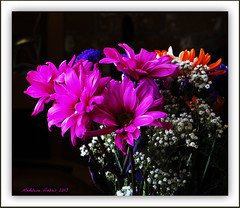 Bouquet floral - Bunch of flowers (Madeleine Dubois) Tags: brillianteyejewel awesomeblossoms amazingdetails silveramazingdetails