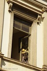Sweet Brussels (Natali Antonovich) Tags: brussels window hat architecture belgium belgique belgie hats lifestyle style sweetbrussels hatisalwaysfashionable