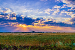 HDR Landscape (Alexey Mikheykin) Tags: yellow hdr landscape sunrise clouds sky nikon kit d3300 field outdoor village sun rays nature