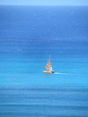 IMG_2965 (dennis_p) Tags: honolulu hawaii hiltonwaikikibeach waikikibeach waikiki